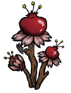 Pomegranate Branch.png