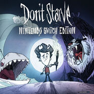 Dsnintendoswitched