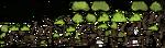 Jungle Tree Guard textures