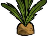 Farm Plant
