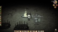 Campfire - Don't Starve game Wiki - Wikia
