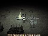 Fogueira (Campfire)