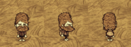 Piggyback Woodie