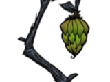 Arbol de Bananas de Cueva