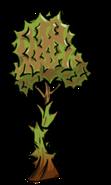 Durian Vine