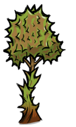 Durian Vine.png