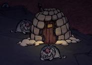 Walrus camp night