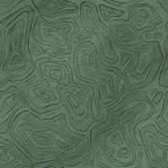Green Fungus Turf Texture