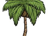 樹/棕櫚樹
