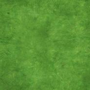 Meadow Turf Texture