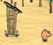Wild Boar Hut and Boar