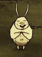 Bunnymanclap