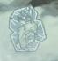 Frozen Rabbit