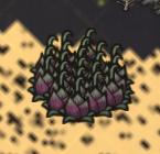 Lureplant map icons