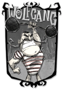 Wolfgang DST