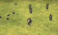 Mandrake meadow