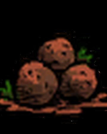Meatballs Don T Starve Wiki Fandom