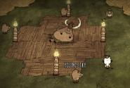 Pig Torch King