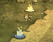 Woodie hoguera endotermica Don't Starve