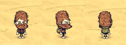 Thatch Pack Woodie.png