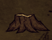 Totally Normal Tree Stump