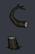 Quagmire tentacle root1