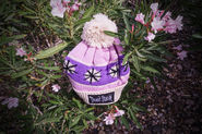Winter Hat Replica Pink Don't Starve Logo