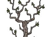 樹/多枝樹