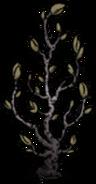 Diseased Lunar Sapling