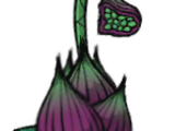 Planta Atrativa (Lureplant)