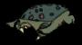 Dead Frog