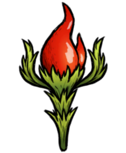 Pepper Plant.png