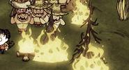 Campfire - Don't Starve game Wiki - Wikiam