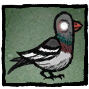 Pigeon Profile Icon