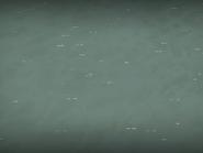 Coastal Ocean In Game