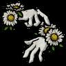 Daisy Bracelets Icon