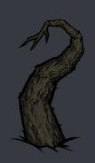 Quagmire tentacle root2