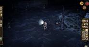 Höhlensumpf1