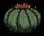 Kaktus.png