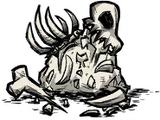 Knochensplitter
