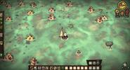 Korallenriff ingame
