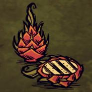 Drachenfrucht-Hauptbild