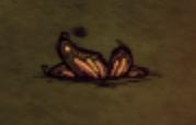 Крылья на земле