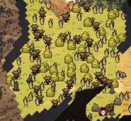 Killer Bee hives