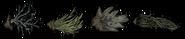 Выкопанные чумные растения
