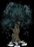 Узловатое дерево 1