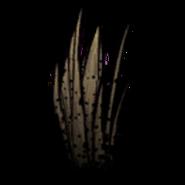 Чумная трава1