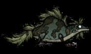 Чумной травяной геккон