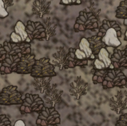 Обычные и золотые кучи на карте