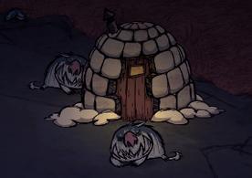 Camp de morses nuit